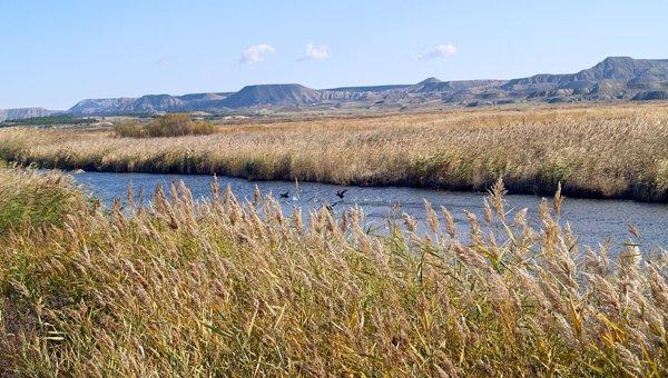 Lagunas de Valtierra-Arguedas