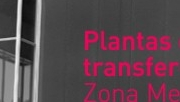 Plantas de transferencia
