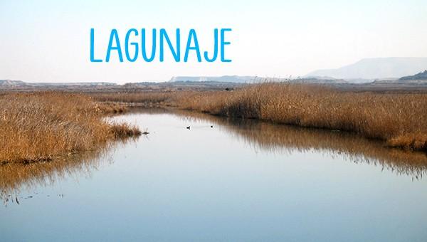 Lagunaje
